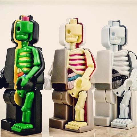 LEGO sanat micro anatomic jason freeny